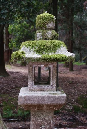 shady: A stone lantern in a shady forested area of Nara in Japan  Stock Photo