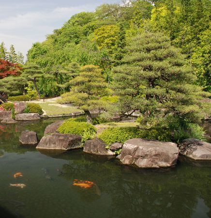 Koi carp in one of the many ponds in Koko-En (Nishi-Oyashiki-Ato) Gardens in Himeji, Kansai, Japan  photo