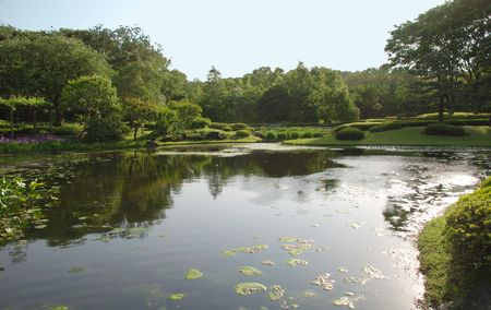 shady: A pond in the shady Imperial Palace Gardens in Tokyo