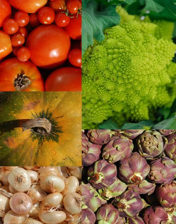 A collage of five different vegetables: romanesco cauliflower, arichokes, pumpkin, button onions, and a variety of tomatoes (including cherry and plum)  photo