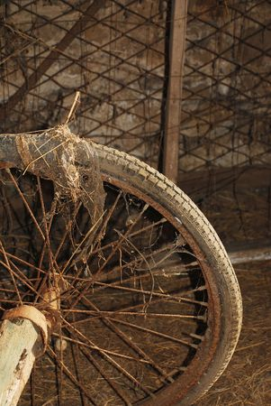 nineteenth: A wheel of a nineteenth century wooden animal-pulled cart in a derelict Italian farm building