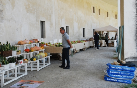 The historic 17th century Villa Manin (Codroipo, Friuli, Italy) during the 2012 Floreal – a festival, exhibition and market of rare plants and bulbs (September 15th 2012) Stock Photo - 15418604