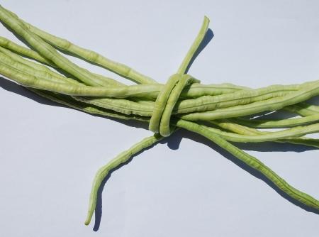 A bundle of Vigna Unguiculata Sesquipedalis bean pods – these annual beans are also known as yardlong bean, bora, long-podded cowpea, asparagus bean, pea bean,  snake bean and Chinese long bean  photo