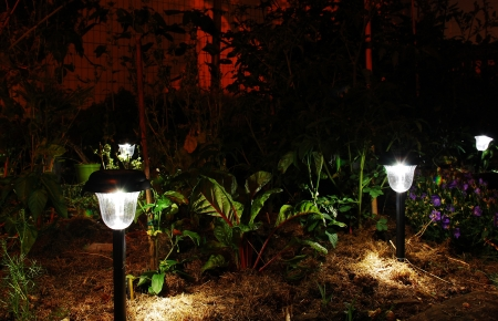 Solar lights in a garden