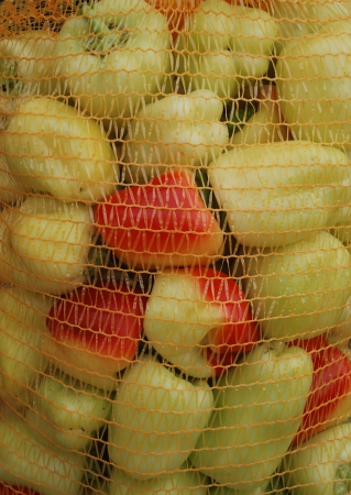 reddening: A orange plastic net bag full of yellow Slovenian peppers  Some are starting to redden