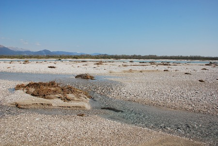 floodplain: The wide floodplain of the Tagliamento River in the northern Italian region of Friuli, known as  Stock Photo