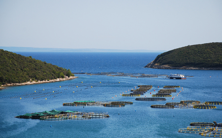 A small fishery in the beautiful clear blue waters of the Croatian coast. This is the east coast of Istria, near Luka Budava.