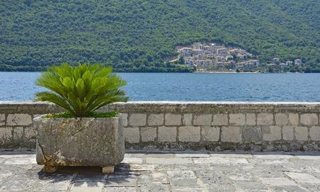 Un vecchio muro di pietra con un impianto su Madonna dell 'isola roccia nella baia di Kotor, Montenegro. L'isola è stata creata artificialmente dalla gente del posto utilizzando rocce. Archivio Fotografico