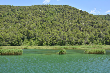 river county: The landscape in Krka National Park, Sibenik-Knin County, Croatia. Photograph taken on the Krka river near the town of Skradin.
