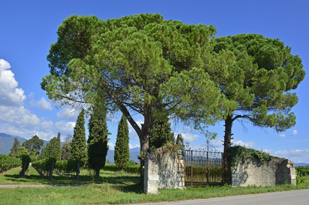 An old historic stone gate, and what remains of the wall, in rural north east Italy