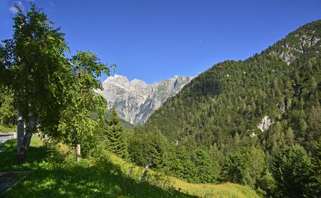 slovenian: The Slovenian side of the Italian Slovenian border close to Mangrt mountain, the third highest peak in Slovenia