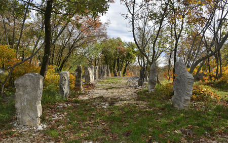 frontline: Autumn colours on display in the Carso karst limestone area of Friuli, near Aurisina in north east Italy. This is part of a World War One walking trail as the area was then on the frontline.