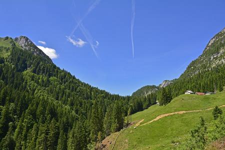 The mid-June rural landscape of the Carnic Alps near Paularo, Friuli Venezie Giulia, north east Italy. Stock Photo