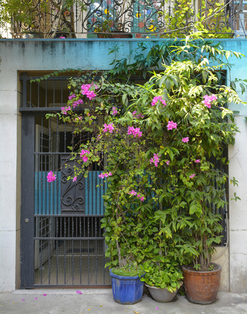 A doorway in a small residential back street in the Tran Hung Alleys area of District 1 in Saigon.