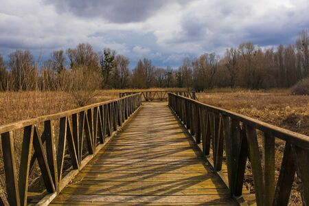 A wooden walkway in the Kopacki Rit Nature Reserve in winter in north east Croatia. Located by the Serbian border, close to the confluence of the Drava and Danube rivers, it is one of the largest and most important European wetlands.
