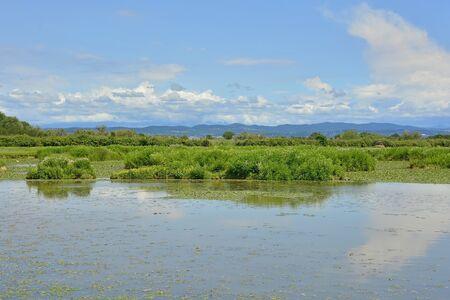 The wetlands of Isola Della Cona in Friuli-Venezia Giulia, north east Italy