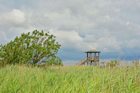 A wooden wildlife observation tower in the wetlands of Isola Della Cona in Friuli-Venezia Giulia, north east Italy