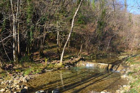 The Kozbanjscek river near Kozbana in Primorska, western Slovenia Banque d'images