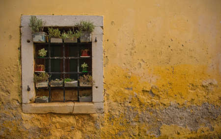 A window in an old historic building in the hill village of Stanjel in the Komen municipality of Primorska, south west Slovenia. Stok Fotoğraf