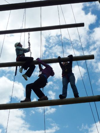 a group of employees on a team building exercise photo