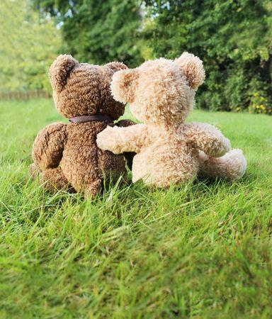oso blanco: Dos osos de peluche en amor sentado sobre c�sped