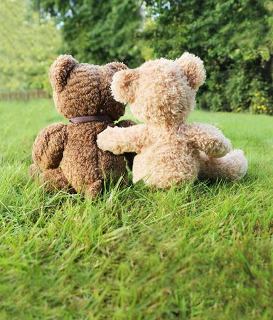 white bear: Two teddy bears in love sitting on grass Stock Photo