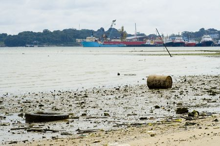 low tide: Debris on a polluted beach at low tide
