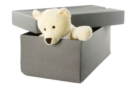 Teddy bear in a shoebox isolated on white background