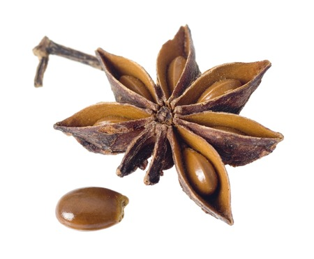 star anise: Star anise with seed isolated on white background Stock Photo