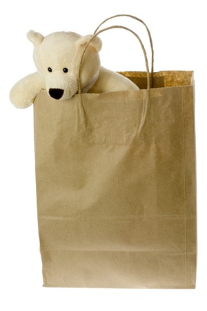 Teddy bear in brown paper bag isolated on white background