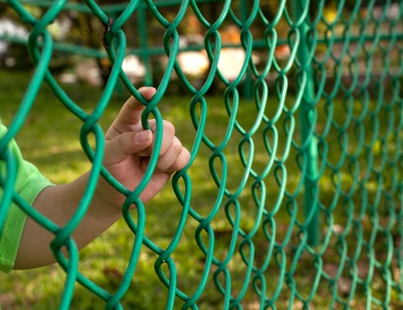 fencing wire: Child finger holding on to a chain link fence Stock Photo