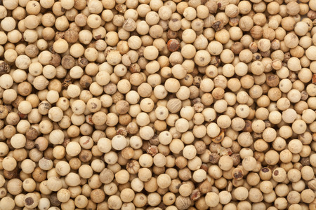 drupe: Closeup of lots of white peppercorns Stock Photo