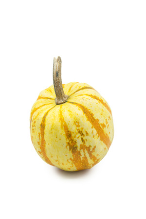 Ornamental orange and white autumn gourd or pumpkin with a segmented speckled rind on white with copy space and shadow.