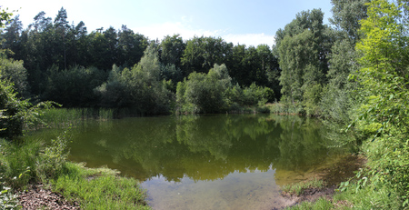 Idyllic small lake in a forest in Mecklenburg-Vorpommern   photo