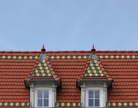predominant:   A roof in Greifswald, Mecklenburg-Vorpommern, Germany, representing the predominant architectual style of Brick Gothic