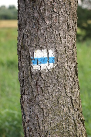 image created 21st century:   Typical hiking path marking on a tree in Germany.