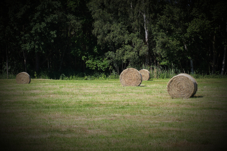 vignetting:   Some hay bales on a mowed meadow. Vignetting was applied.