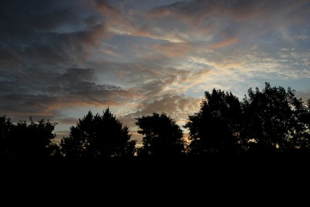 image created 21st century:   Different impressive and colorful clouds in the morning with tree silhouettes.