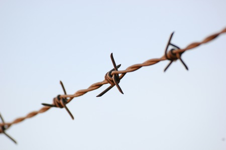 Barbed wire in evening sun. photo