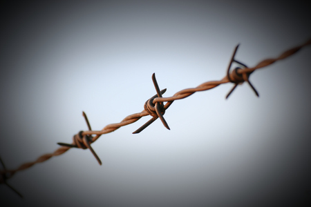 barbed wire: Barbed wire in evening sun. Stock Photo