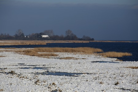 salt marsh: Winter landscape on the Karrendorfer Wiesen, a salt marsh nature reserve near Greifswald, Mecklenburg-Vorpommern, Germany. The island Koos can be seen in the background.