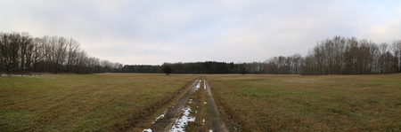dirt path: Panoramic view of meadow in winter with dirt path. Stock Photo