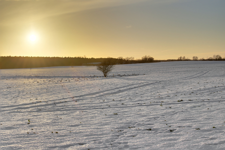 greifswald: Snowy winter landscape though warmed by the sun. The image was taken near Greifswald, Mecklenburg-Vorpommern, Germany, using a HDR imaging technique. Stock Photo