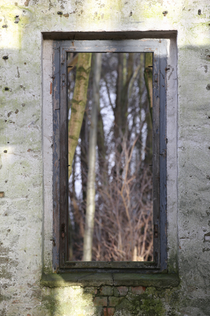 image created 21st century: Look through a window of a ruined house in the forest with a creative focus effect.