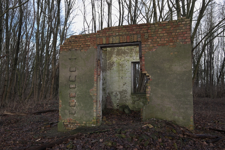 Look through the remains of a ruined house in the forest. photo