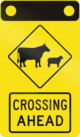 sheep road sign: Australian road warning sign - Domestic animal crossing ahead