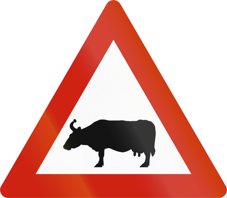 Norwegian road warning sign - Cattle crossing.