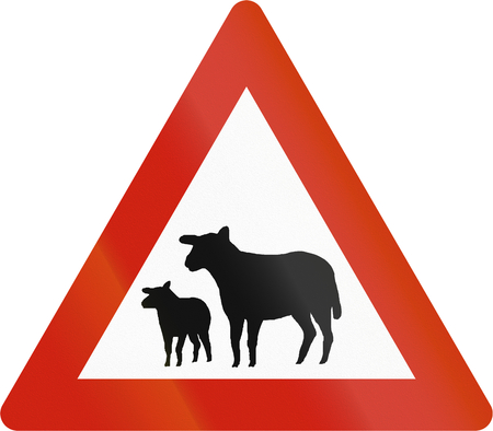 sheep road sign: Norwegian road warning sign - Sheep crossing.