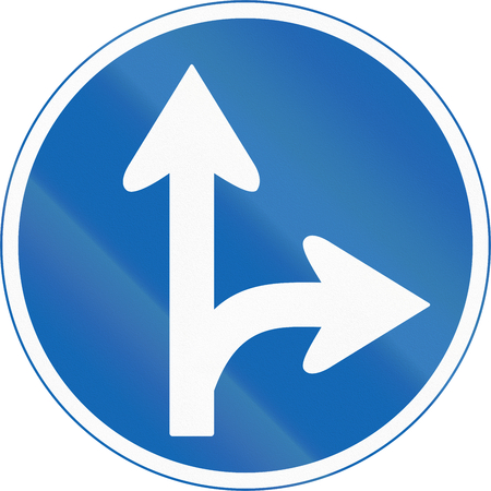 blue arrow: Japanese road sign - Mandatory direction to be followed.