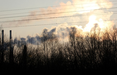 fumes: Abstract shot of industrial fumes and bare trees.